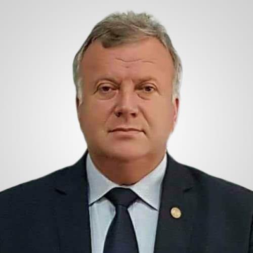 Șovăială Constantin – Sinteza activității parlamentare