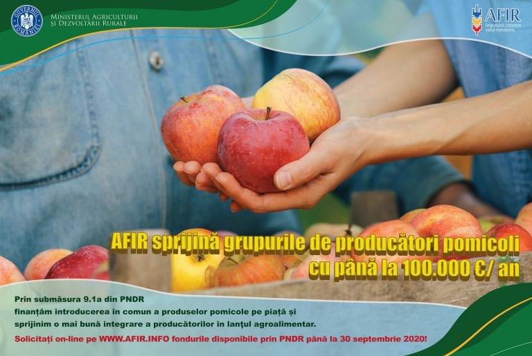 Ministerul Agriculturii sprijină producătorii locali