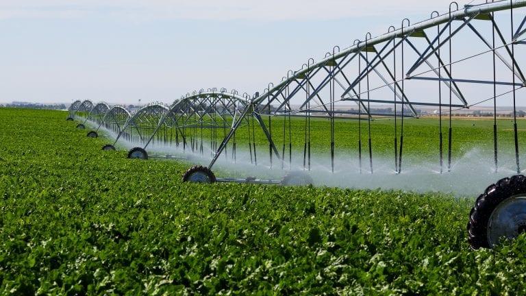 Peste 1 milion de hectare irigate în acest an