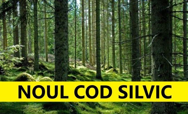Noul Cod Silvic a fost aprobat de Parlament