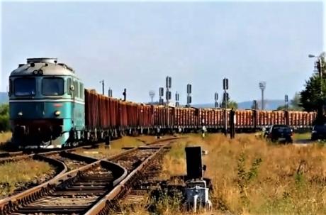 Tren care transporta lemne din import fără documente legale
