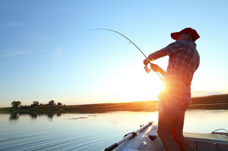 Program de pescuit în Delta Dunării (P)