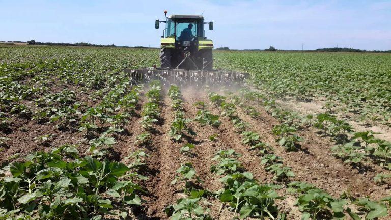 Fermierii depun la APIA Cererile de plată pentru rambursarea ajutorului de stat pentru cantităţile de motorină